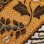 motif batik warna pekalongan 8